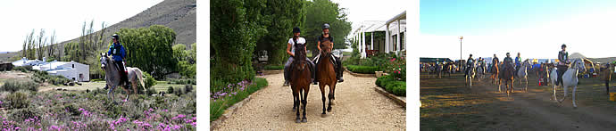 Horse riding at Schanskraal